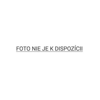 ASUS MB Sc LGA1151 PRIME Q370M-C, Intel Q370, 4xDDR4, VGA, mATX